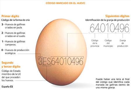 Clasificación huevos